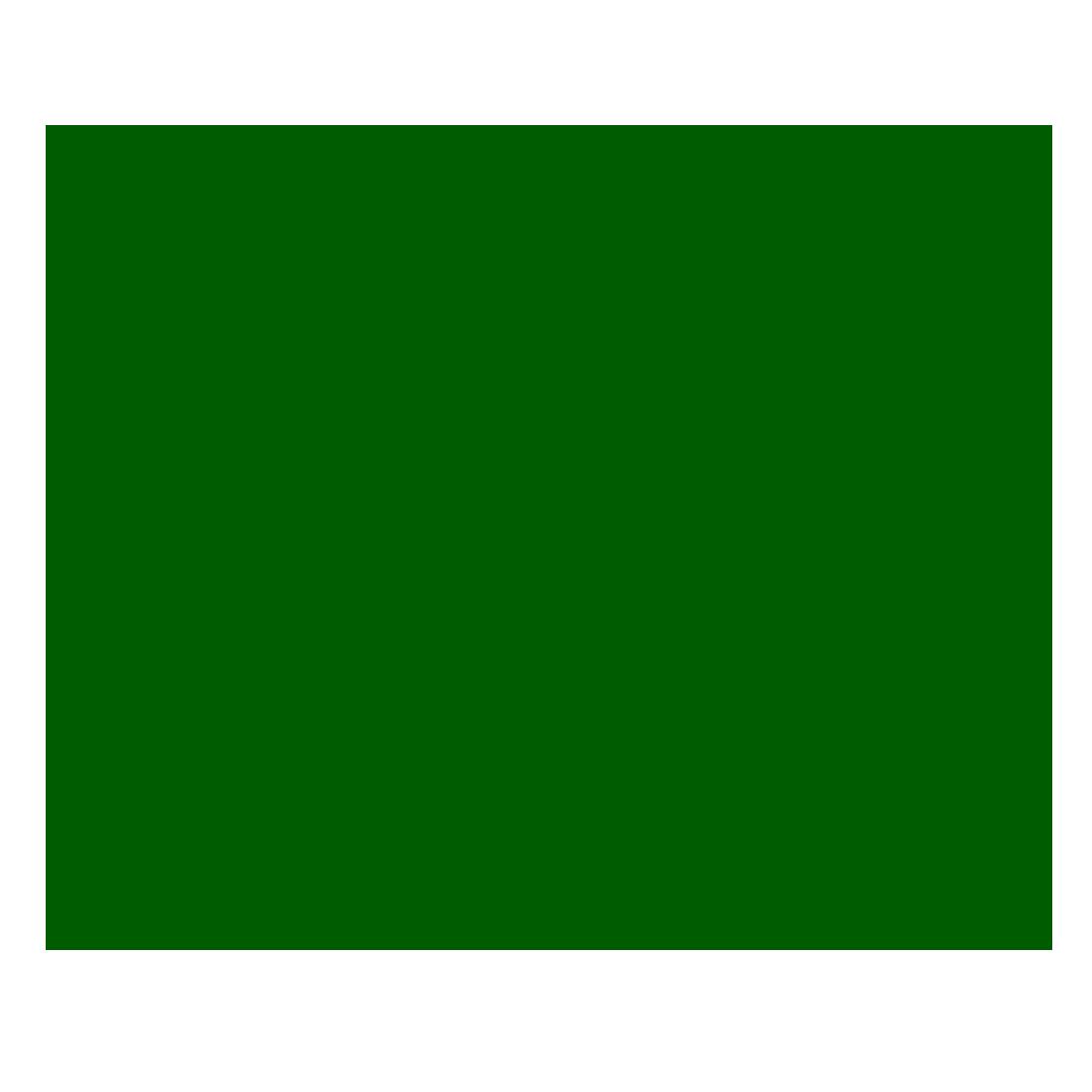 عرفان منظری
